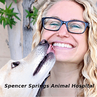 Spencer Springs Animal Hospital of Las Vegas